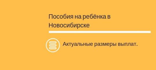 Пособия на ребенка в Новосибирске